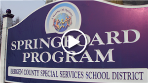 The Springboard Program